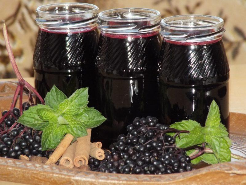 Бузина черная: лечебные и полезные свойства, противопоказания