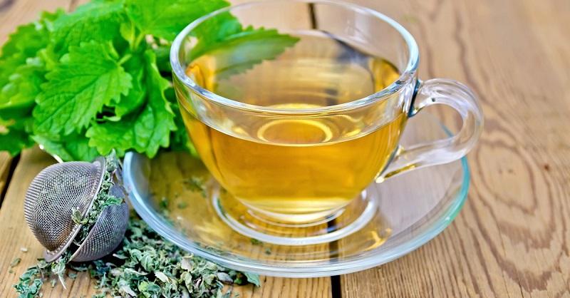 Жую листья мелиссы в приказном порядке: женская трава не позволит рано постареть. Неприхотливая садовая трава, настоящая зеленая аптечка и сокровищница витаминов.
